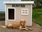 Hunter - Oregon